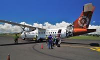 FijiAA159216adj.jpg