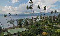 FijiAA159275adj.jpg