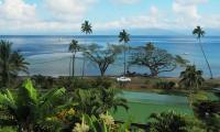 FijiAA169318adj.jpg