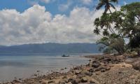 FijiAA169382adj.jpg