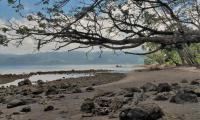 FijiAA169387adj.jpg