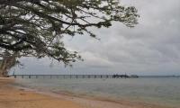 FijiAA179465adj.jpg
