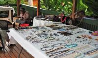 FijiAA179547adj.jpg