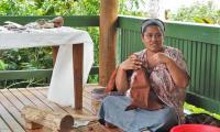FijiAA179566adj.jpg