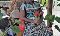 FijiAA189702adj.jpg
