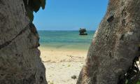 FijiAA199887adj.jpg