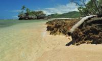 FijiAA199909adj.jpg