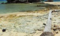 FijiAA199916adj.jpg