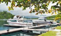 FijiAA200120adj.jpg